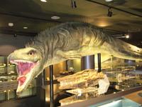 Mosasaurusu